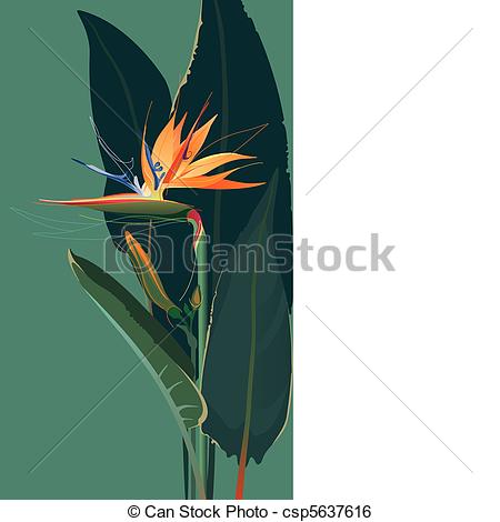 Bird Of Paradise clipart colorful bird Bird Of flower of Clip