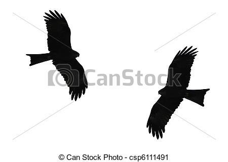 Bird Of Prey clipart Birds silhouette of csp6111491 of