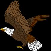 Bird Of Prey clipart Prey Rising Bald your Clipart