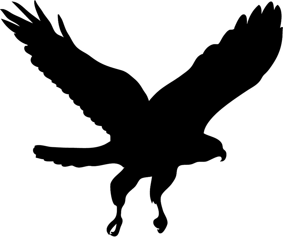 Simple clipart hawk Themed Pinterest Silhouettes More Eagle