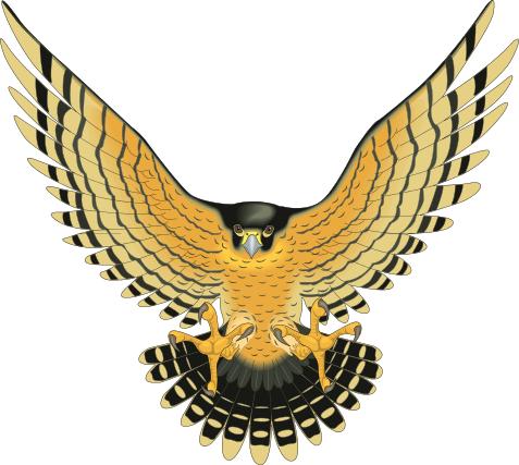 Bird Of Prey clipart Html attacking of attacking bird