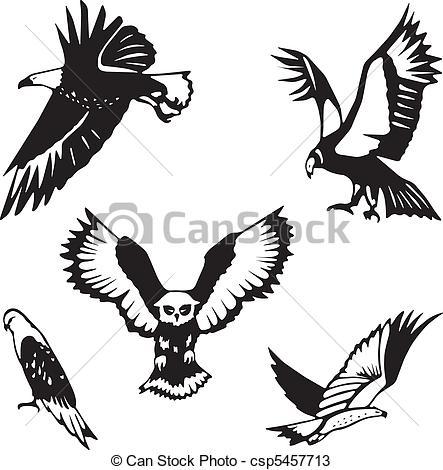 Bird Of Prey clipart vector Clip Bird prey Bird Art