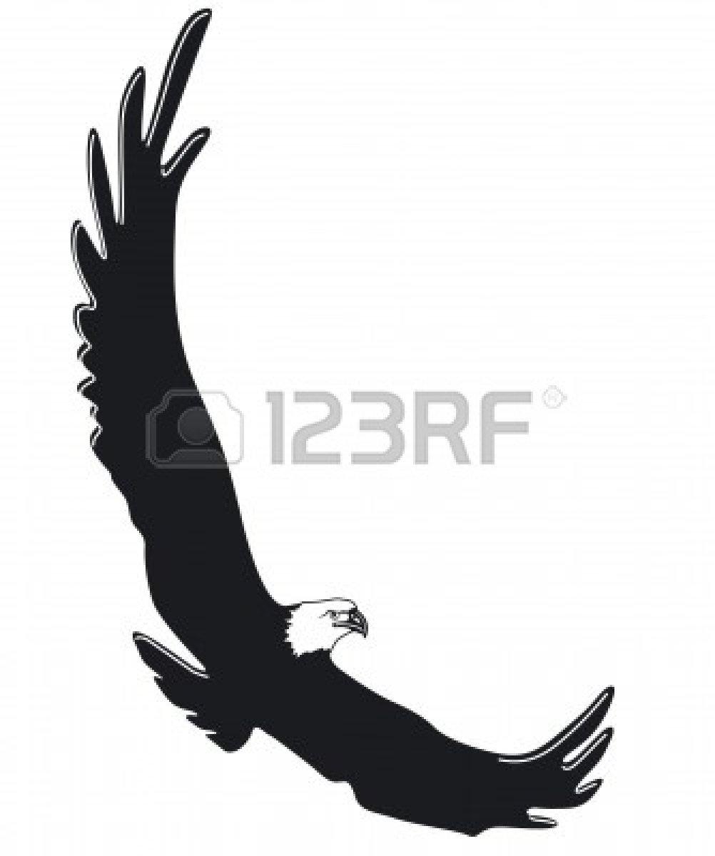 Bird Of Prey clipart soaring eagle Panda And  Soaring Free