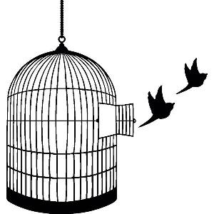 Cage clipart zebra Bird tattoo I Bird cage
