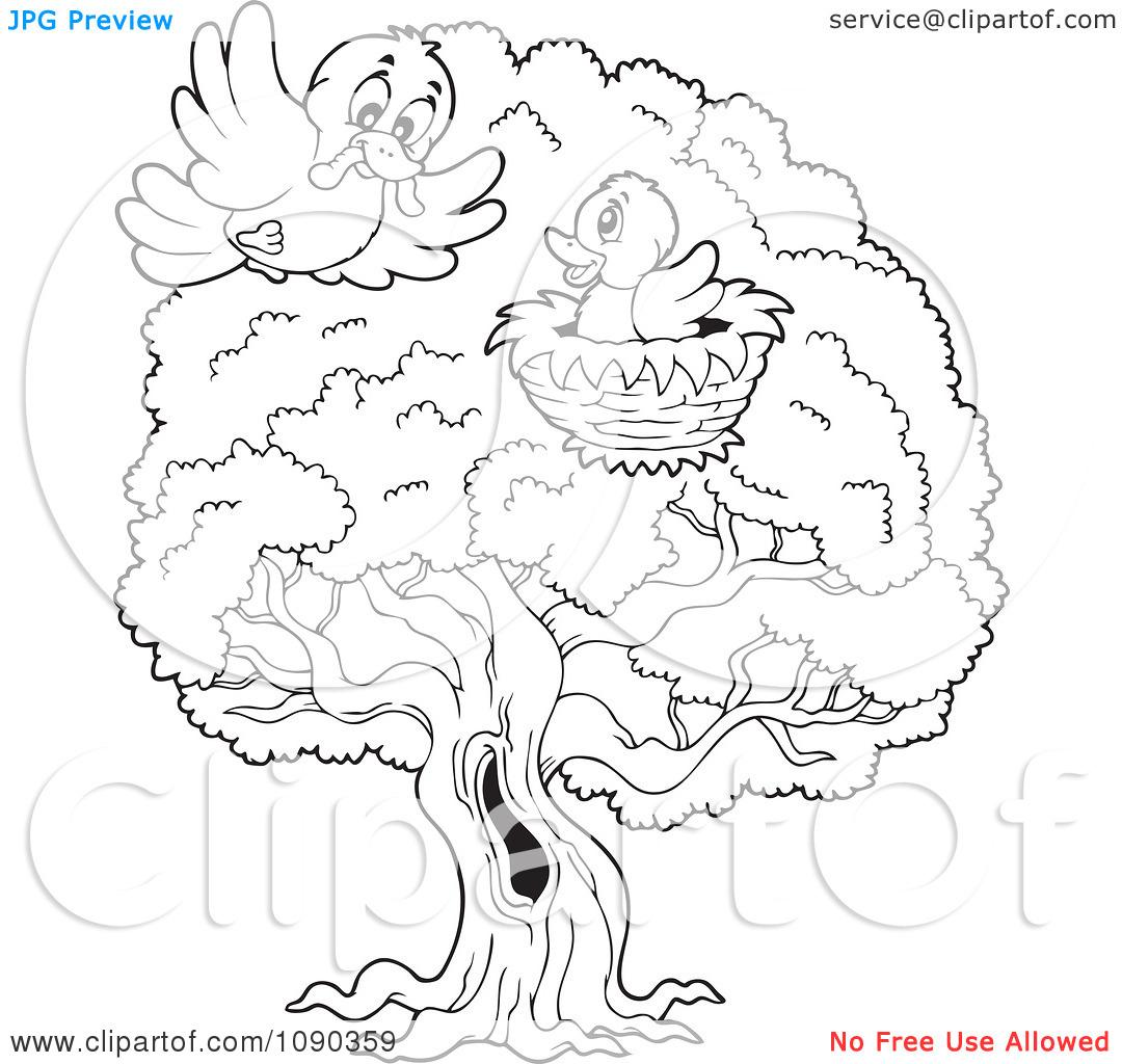 Nest clipart tree drawing Nest Nest The Owl