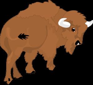 Bison clipart Savoronmorehead Bison Bison Art Clipart
