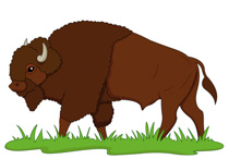 Bison clipart From: Buffalo  praire bison