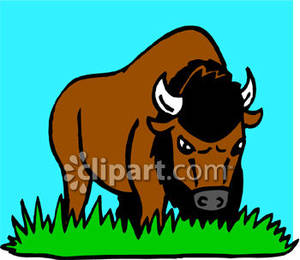 Bison clipart cartoon Fans clipart clipart Clipart bison