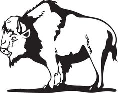 Bison clipart dead Clip Royalty buffalo 015 For