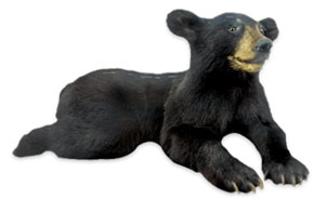 Black Bear clipart cartoon Image Top Black Bear Black