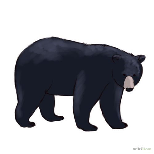 Black Bear clipart cartoon Bear  but black black
