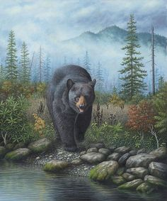 Black Bear clipart wilderness Wildlife painting Bear bear by