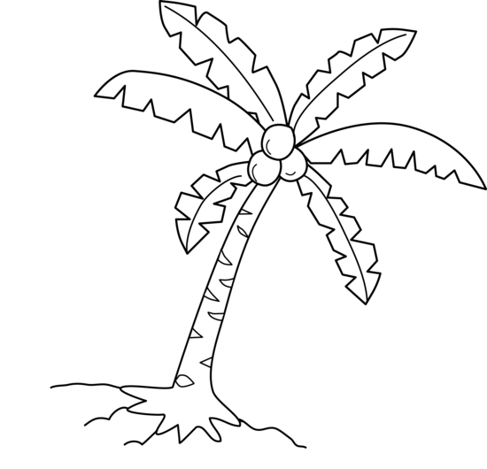 Black clipart coconut tree Black White Clipart  And
