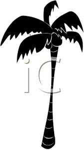 Black clipart coconut tree And Tree Free White Coconut