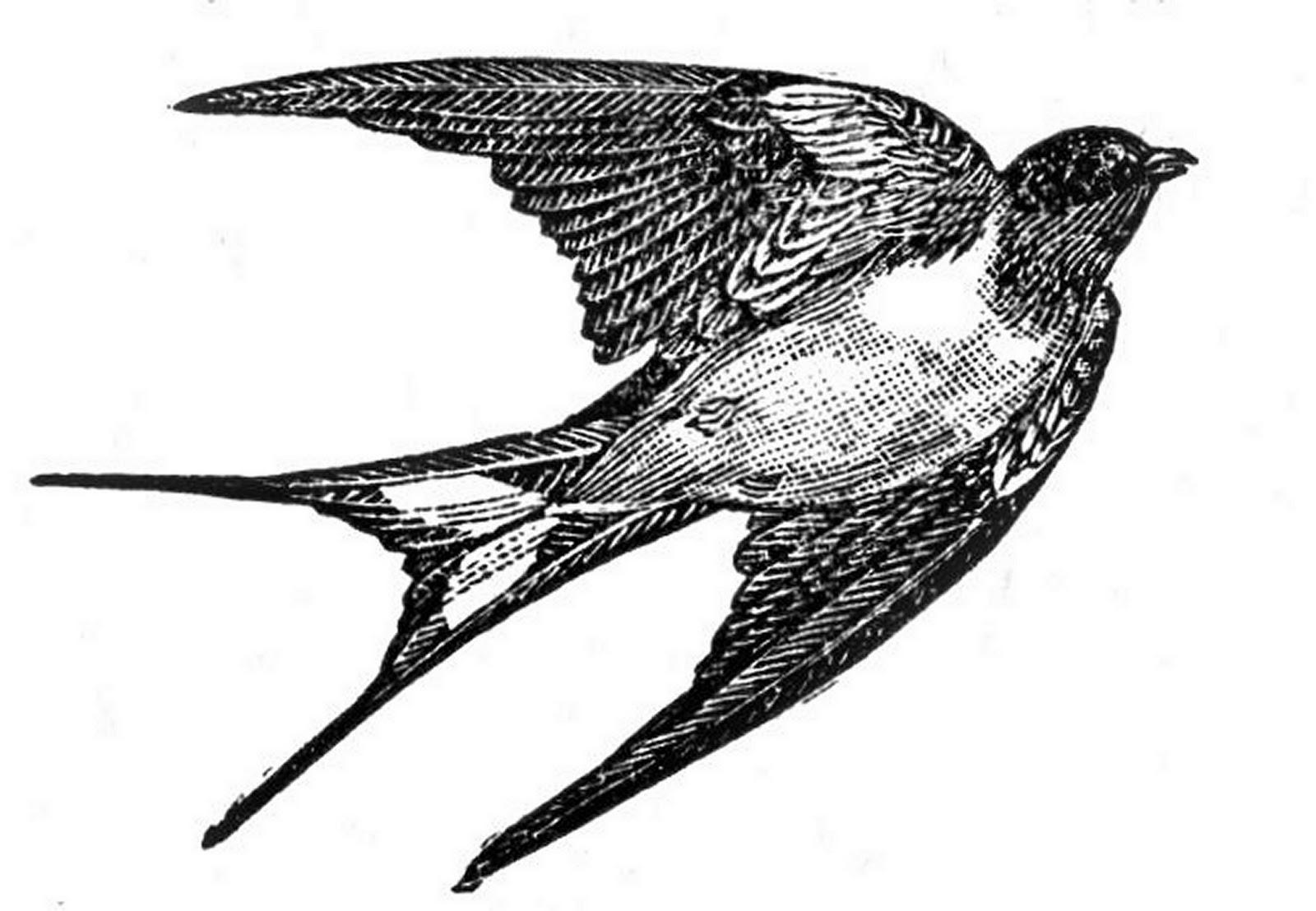 Black clipart sparrow Clipart Flying sparrow Sparrow Flying