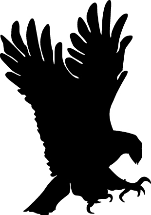 Black Eagle clipart #14