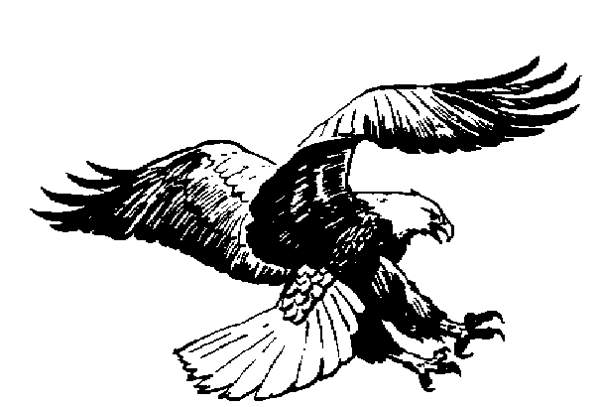Gallery clipart soaring eagle 84 Eagle Eagle Clipart Free