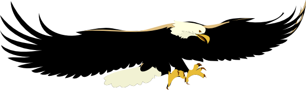 Black Eagle clipart flight silhouette Eagle this  image Art