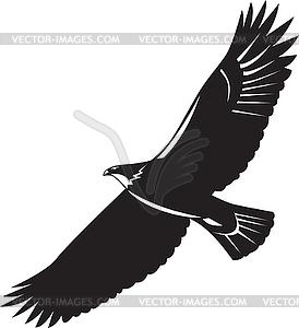 Black Eagle clipart american eagle Clip Eagle White And American