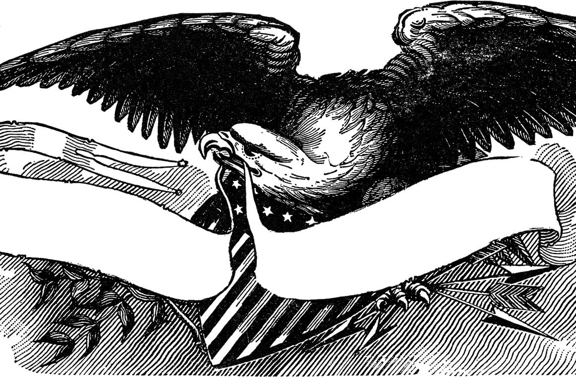Black Eagle clipart patriotic Graphics Eagle  Bald Clip