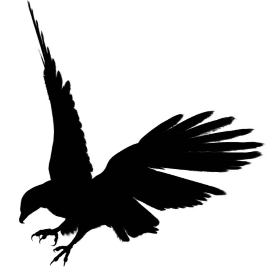 Black Eagle clipart silhouette Black Eagle #6 Download Black