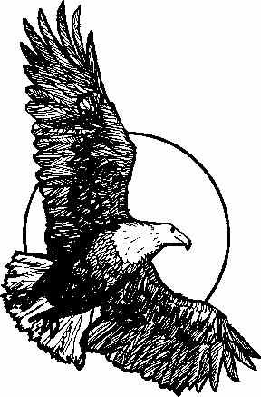 Black Eagle clipart soaring eagle And Soaring Free  Favorite