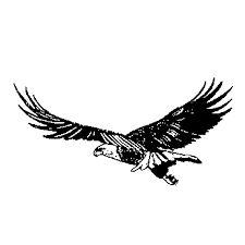 Black Eagle clipart soaring eagle Art soaring eagles Search silhouette