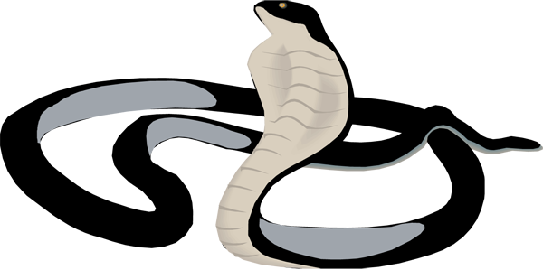 Black Mamba clipart Concentrates rich Mamba NET and