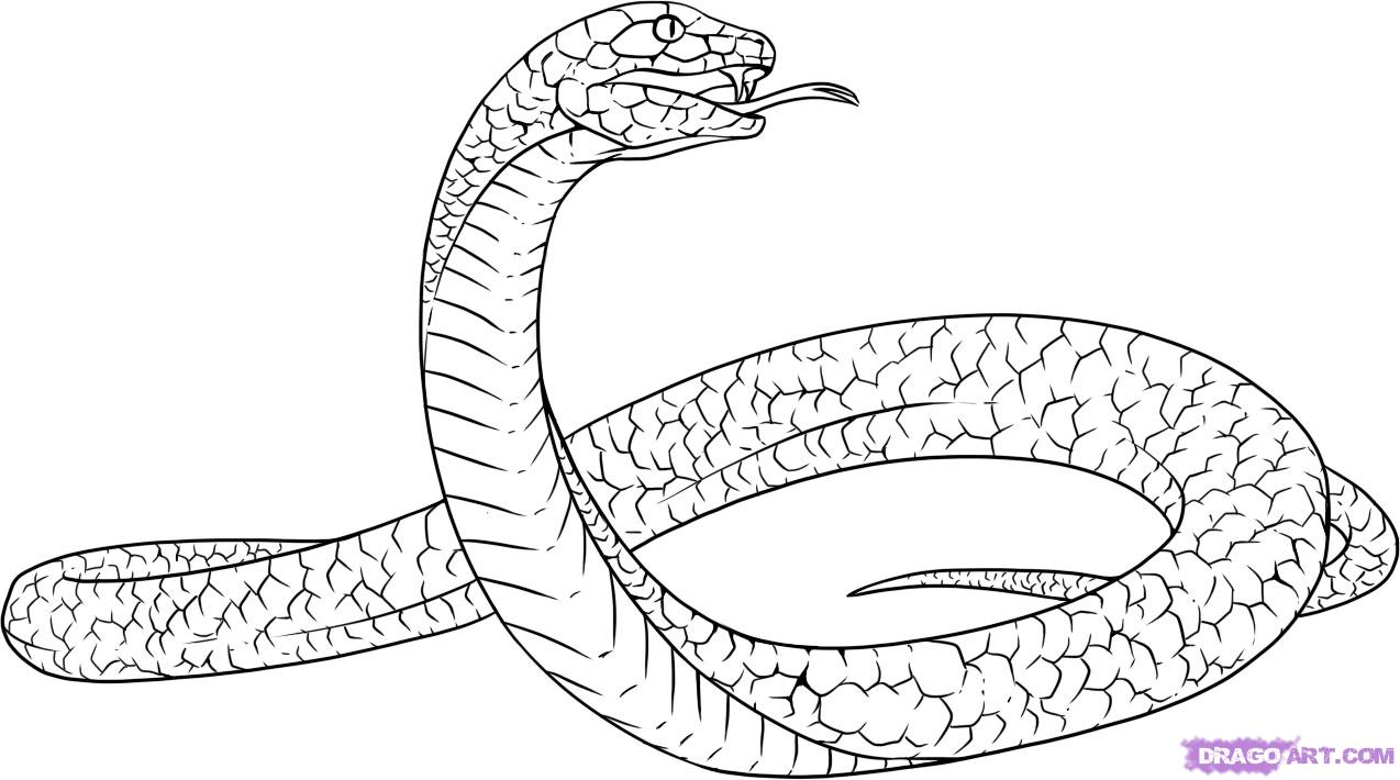 Drawn snake simple To step Mamba a Animals
