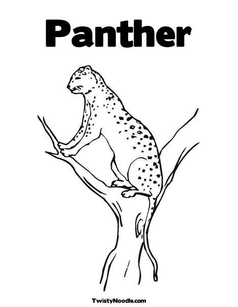 Black Panther clipart florida panther Florida Panther (41+) coloring black