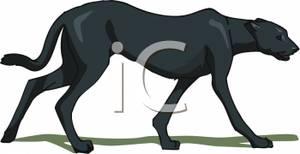 Black Panther clipart puma Walking Panther Black Walking Panther