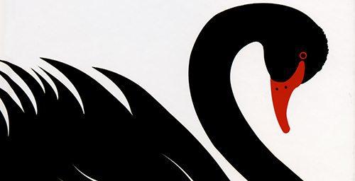 Black Swan clipart nassim taleb – directs  Indian models