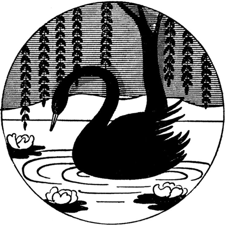 Black Swan clipart simple Pinterest Repeating ideas Silhouette Black