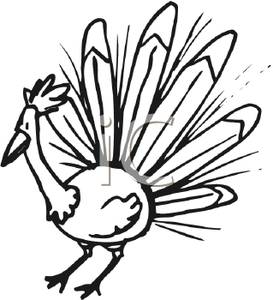 Peacock clipart black and white Black collection Black white And