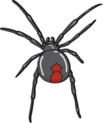Black Widow clipart animated Results Pictures Results Size: Spider