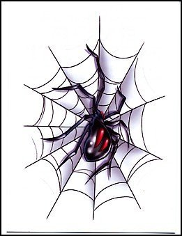 Drawn spider web nest ~Metacharis in Widow 95