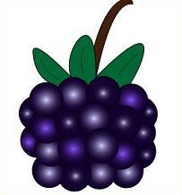 Blackberry clipart Free Blackberries Clipart Blackberries