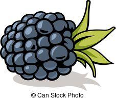 Blackberry clipart Blackberry of Stock  022