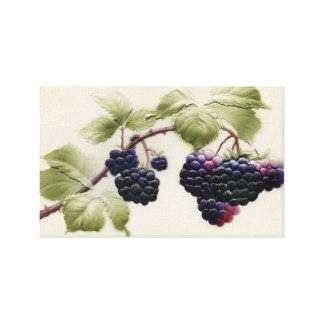 Blackberry clipart more & Framed and Blackberry Blackberries