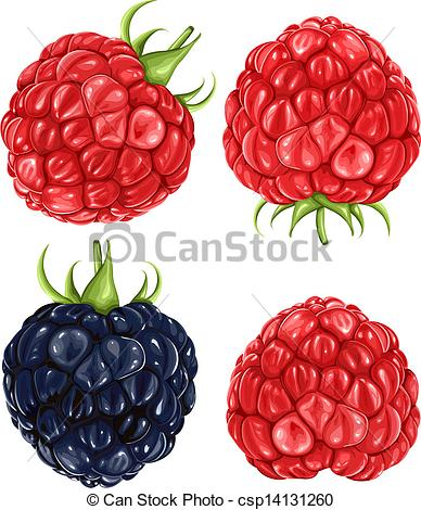 Raspberry clipart blackberry Blackberry blackberry Raspberries Clip