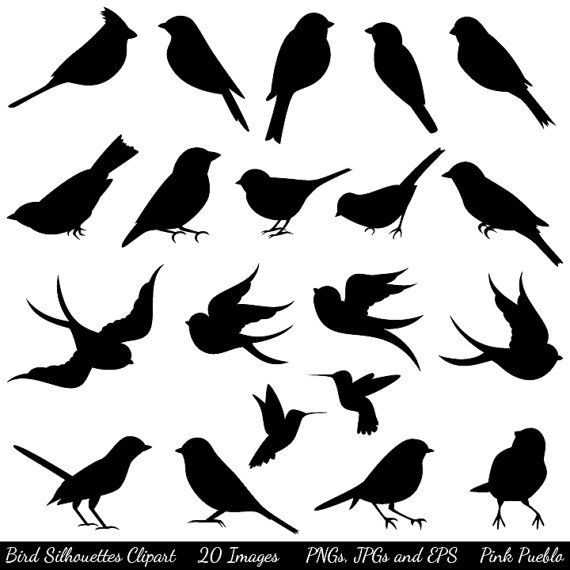 Blackbird clipart bird silhouette Best ideas and Commercial Clip