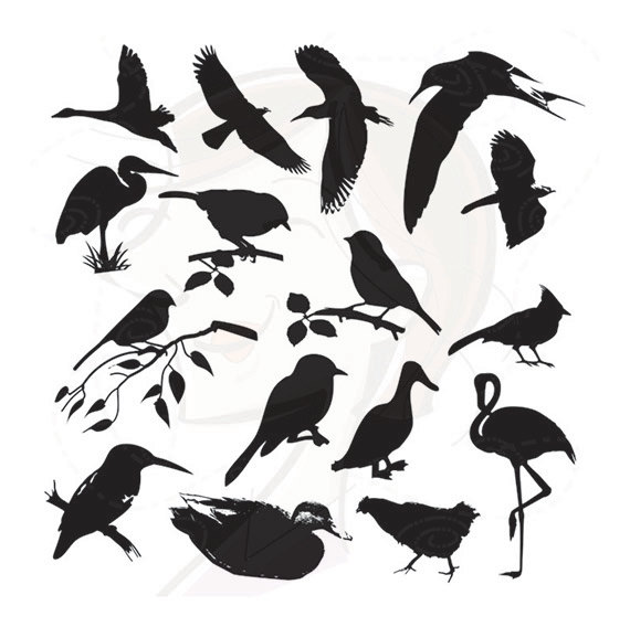Blackbird clipart bird silhouette Design Birds Black Decorative Supply