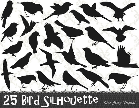 Blackbird clipart bird silhouette Bird from Art Bird Clip