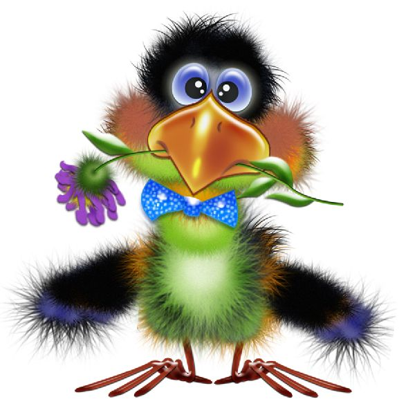 Blackbird clipart cute I them doubt birds but