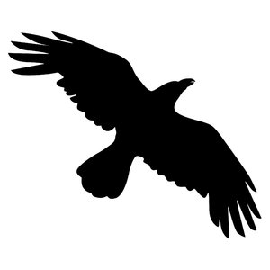 Blackbird clipart flying crows Rgbstock Silhouette Free stock Crow
