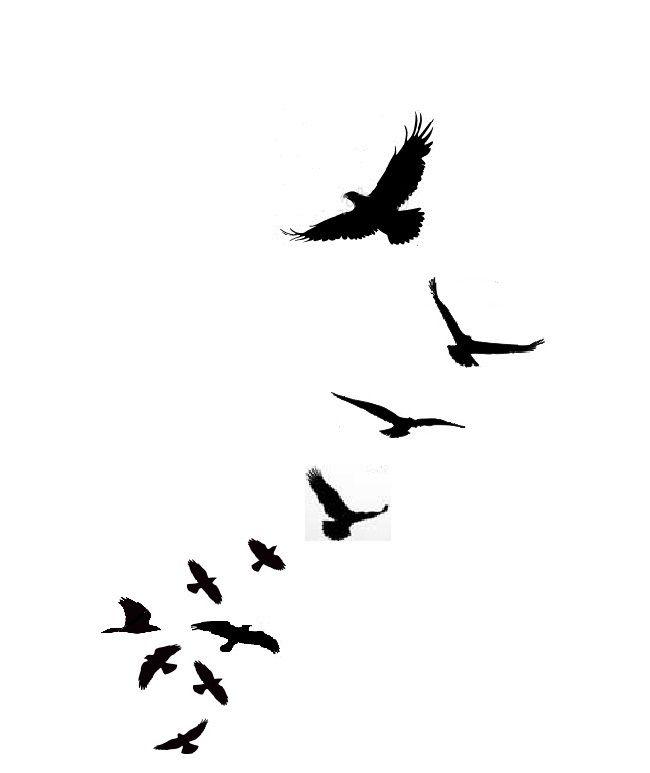 Blackbird clipart flying crows 25+ on 20 Bond Pinterest