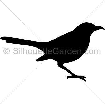 Blackbird clipart mockingbird Png 9 mockingbird about flyer