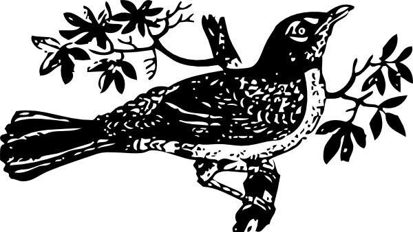 Blackbird clipart mockingbird Clip free Singins (2