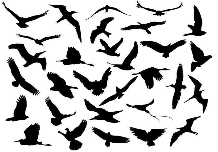 Drawn flying gambar #13