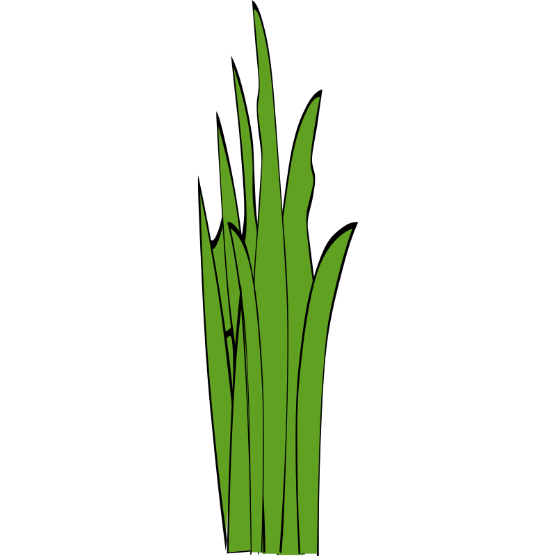 Blade clipart grass Clip Art of Blades –